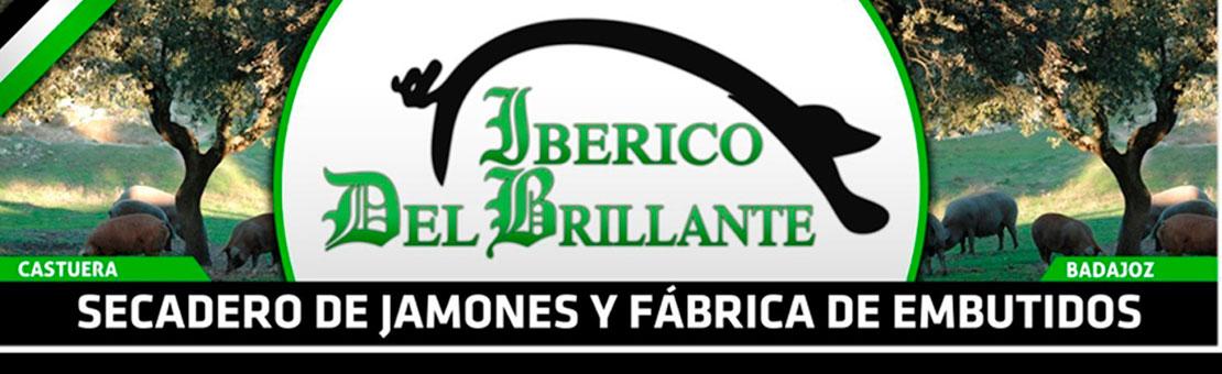 Jamón 100% Ibérico | Ibérico del brillante